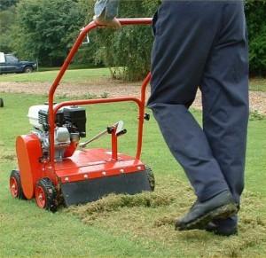 entretien pelouse hiver
