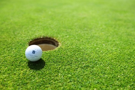 gazon pour green de golf