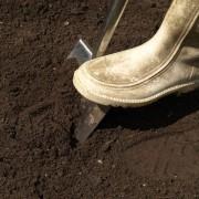 la qualité de la terre végétale
